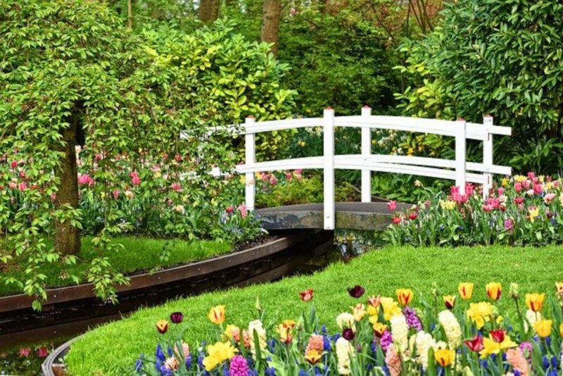 Architektura ogrodowa – jak zaaranżować ogród?